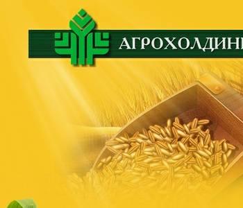 новоаннинский элеватор волгоградской области адрес