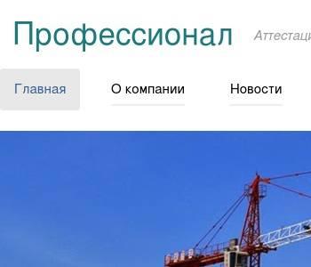 Автономная некомерческая организация центр профессионал в хакасии