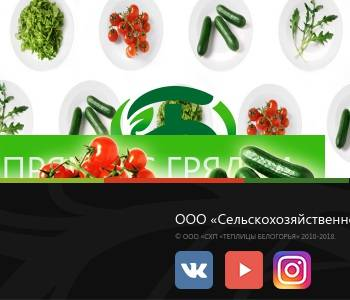 ооо схп теплицы белогорья официальный сайт