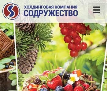 Холдинговая компания содружество нижневартовск официальный сайт сайт медицинской страховой компании
